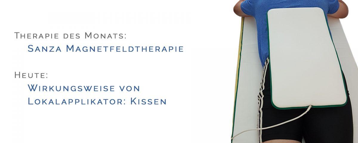 Lokalapplikator: Kissen - Magnetfeldtherapie